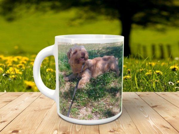 perro2 600x450 - Taza personalizada para mascotas con foto